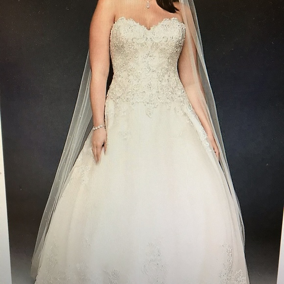 Beaded Lace and Tulle Wedding Dress (plus size)